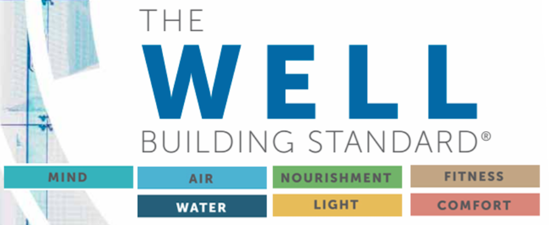 well-standard-w4y-wellap